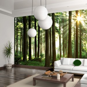 Increasing YOY Revenue By 420 For Photowall Case Study Image